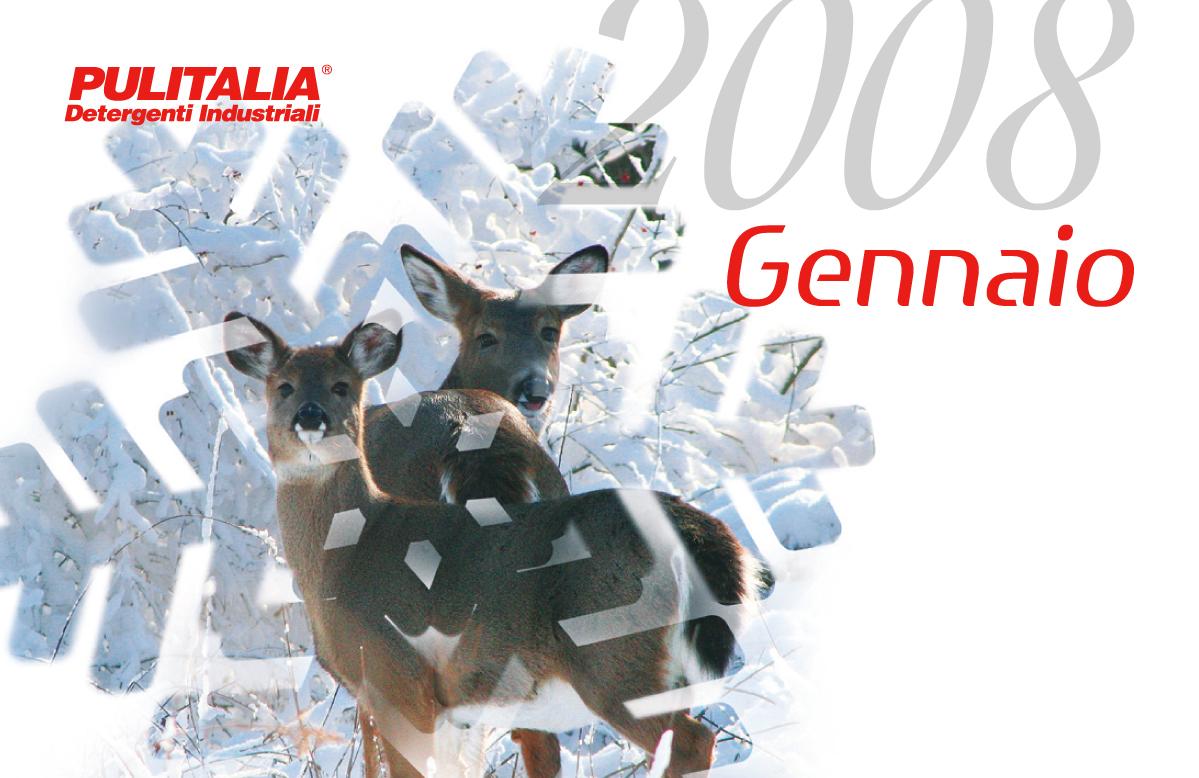 Calendario Pulitalia 2008