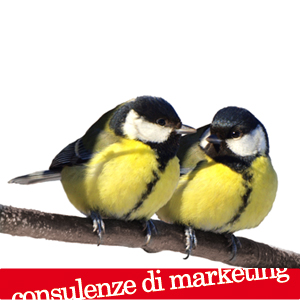 Consulenze di marketing