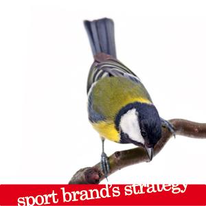 Sport brand strategy