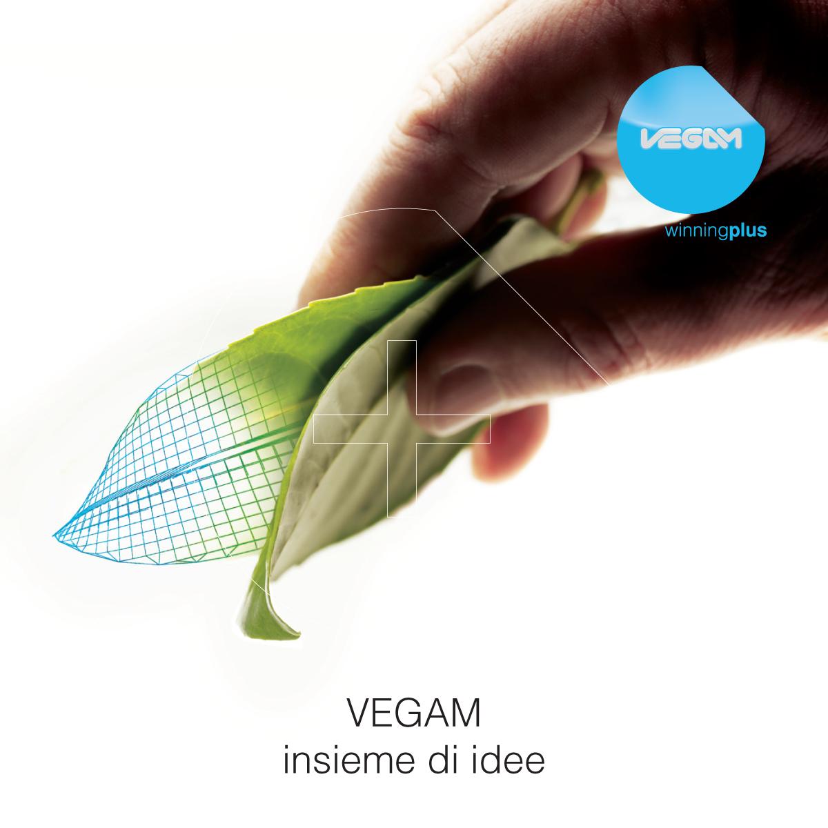 Strumenti di promozione-promotional activities: Monografia e manuale aziendale Vegam
