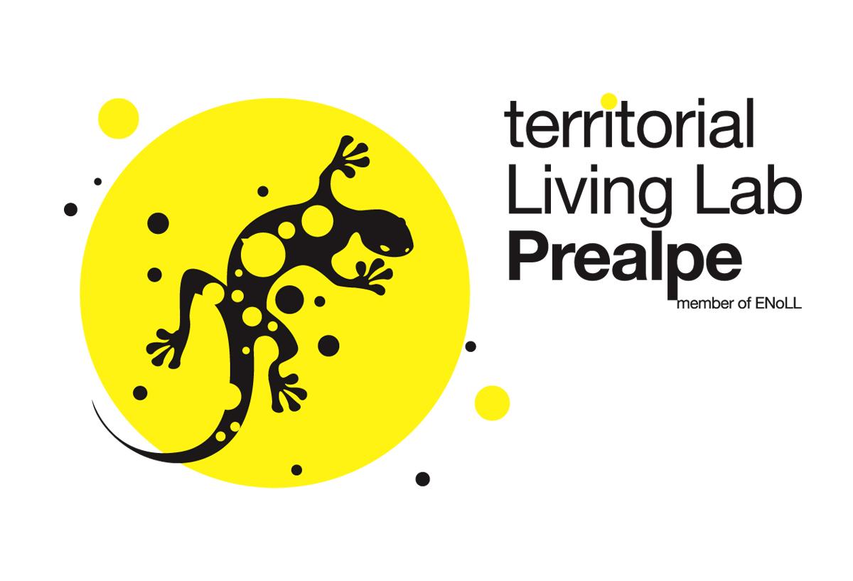 Immagine coordinata-Corporate image : Logo, mark tLL