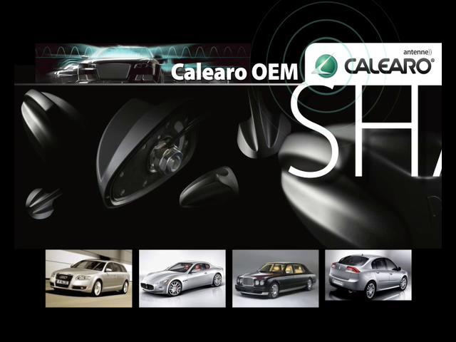 Video Presentazione Calearo Group