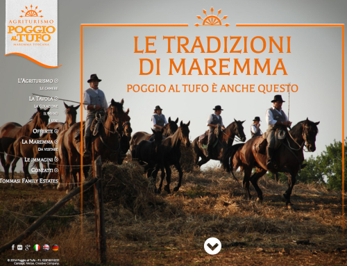 Website agritourism in Tuscany